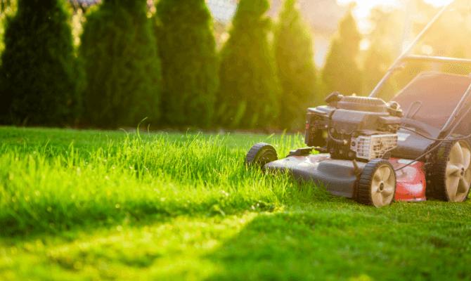 cum alegi cea mai buna masina de tuns iarba electrica
